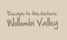 footer-visit-wollombi-1.png